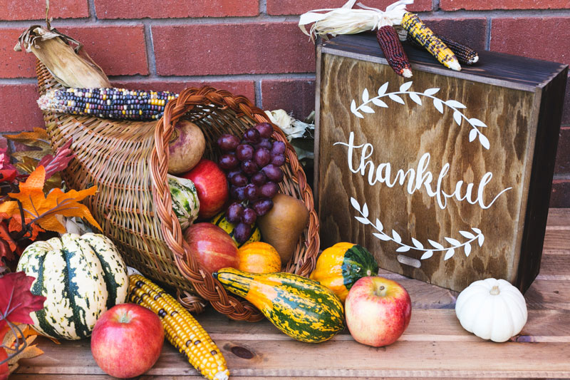 Steve Padgett's Thanksgiving Thank You To Skagit County area Business Owners