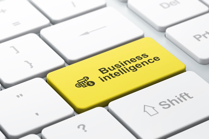 The Business Intelligence You Don't Know That You Need For Your Skagit County area Company
